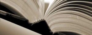 """alt=""""son los libros caros, javierpellicerescritor.com"""""""