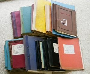 """alt=""""portada, libros, javierpellicerescritor.com"""""""